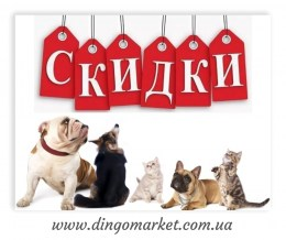 dingomarket_reddingo_logotip_skidki_22