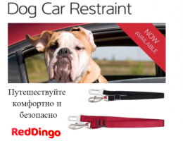 dog _car_restraint_flyer_with_fact_sheet_dingomarket_baner5